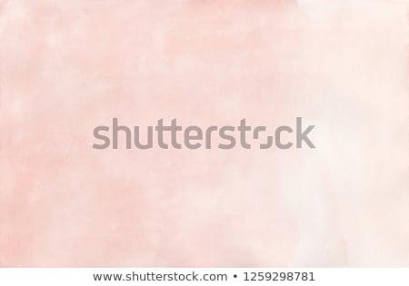 rózsa · virág · textúra ·  · klasszikus · antik - stock fotó © susabell