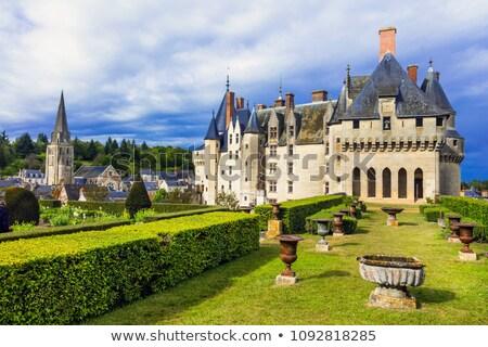 Vallei Frankrijk kasteel architectuur geschiedenis toren Stockfoto © tilo