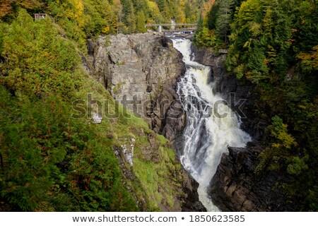 Rivier bos Quebec Canada water Stockfoto © bmonteny