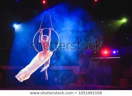 Légi akrobatika előadás Moszkva Oroszország december Stock fotó © d13