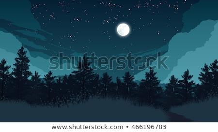 vetor · lua · céu · noturno · floresta · árvores - foto stock © carodi