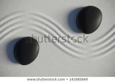 two black pebble stones stock photo © dezign56