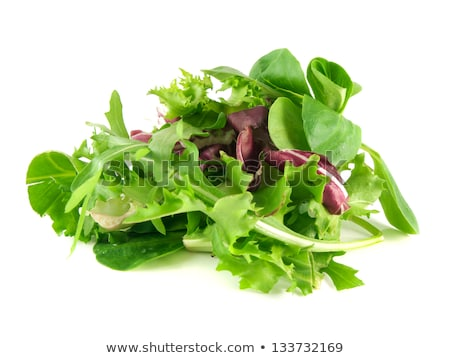 Salad mix with rucola, frisee, radicchio and  lettuce.  Stock photo © mcherevan