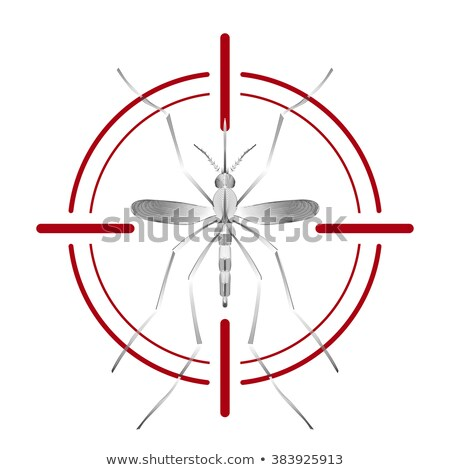 Fever mosquito species aedes aegyti isolated on white background Stock photo © Fosin
