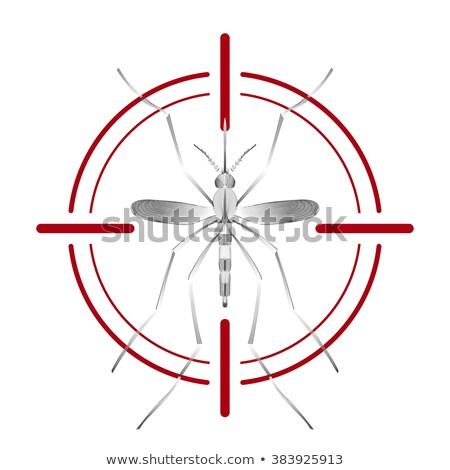 蚊 · 漫画 · ブラジル · フラグ · 医療 · 健康 - ストックフォト © fosin