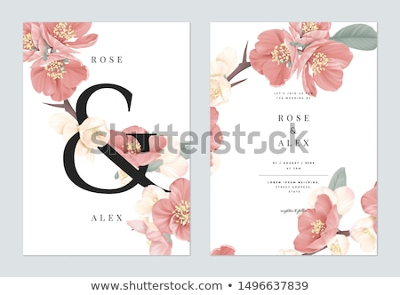 floral templates stock photo © bluering