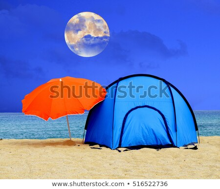 Tropical moonlight over sandy beach  Stock photo © elaine