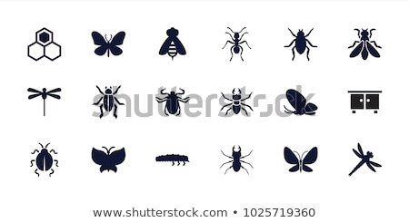 Icônes insectes illustration blanche fond rouge Photo stock © bluering