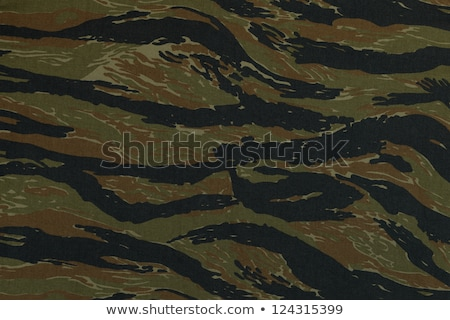 asker · saldırı · orman · özel · güçler - stok fotoğraf © superelaks