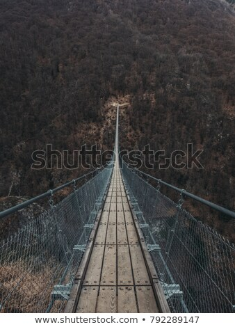 wooden bridge over river leading to forest and sky background Stock photo © FrameAngel