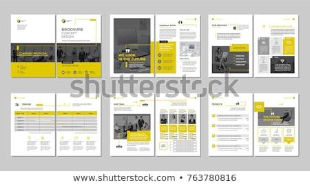 Vállalati üzlet éves jelentés brosúra sablon Stock fotó © SArts
