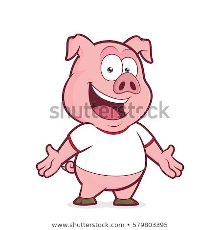 Cartoon varken mascotte karakter cute Stockfoto © Krisdog