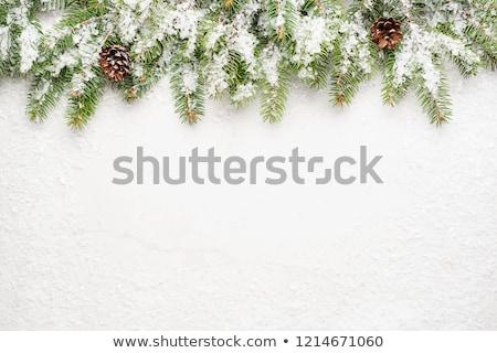 plantilla · de · diseño · invierno · ataviar · forestales · Navidad · folleto - foto stock © romvo