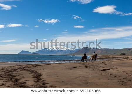 Horsemen on beach in Iceland Stock photo © bezikus
