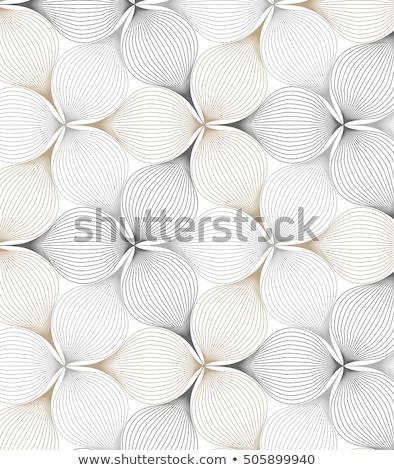 Creatieve lijn bloempatroon textuur patroon poster Stockfoto © SArts