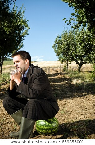 Man sitting on watermelon in orchard. Stock photo © IS2