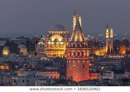 View on Galata Tower Stock photo © Givaga