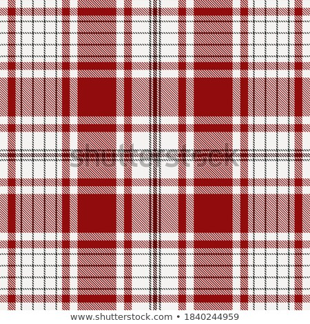 Black and white tartan vector seamless pattern background Stock photo © sanjanovakovic