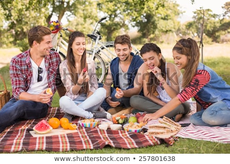 happy friends with picnic blanket at summer park Stock photo © dolgachov