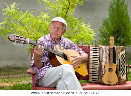 People playing music in garden stock photo © colematt