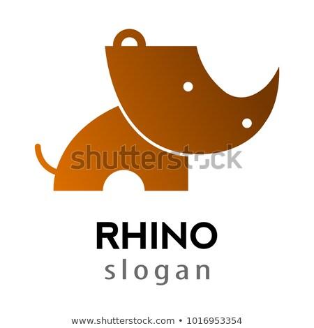 Stock foto: Cute · Vektor · Karte · wildes · Tier · rhino · cool