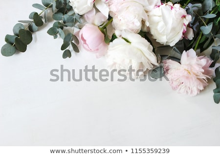 photo with flowers white background stock photo © cammep