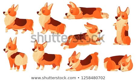 characters walking with domestic animal set vector stock photo © pikepicture