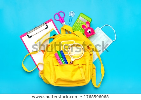 Vissza az iskolába gyerekek készlet leckék vektor stílus Stock fotó © robuart