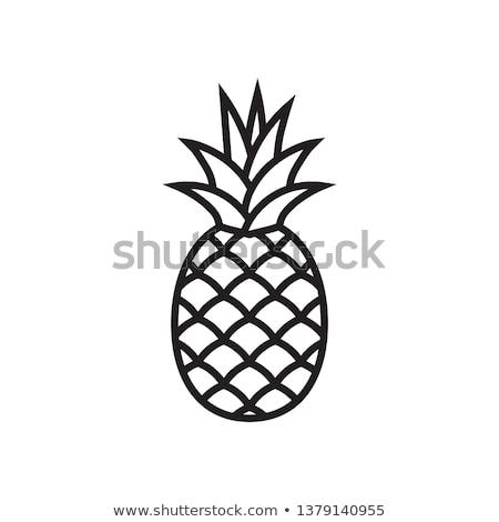 Icon ananas kleur ladder ontwerp natuur Stockfoto © angelp