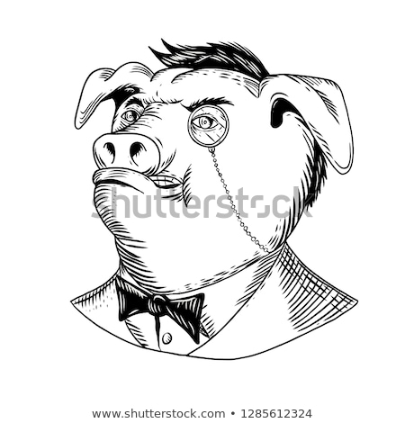 Aristocratic Pig Monocle Black and White Drawing Stock photo © patrimonio