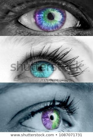 Various colored eyes in series of three Stock photo © wavebreak_media
