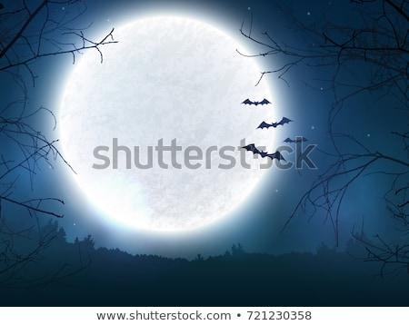 halloween · vector · schedel · zwarte · raaf - stockfoto © sarts