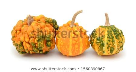 Ongebruikelijk decoratief veelkleurig groene oranje natuur Stockfoto © sarahdoow