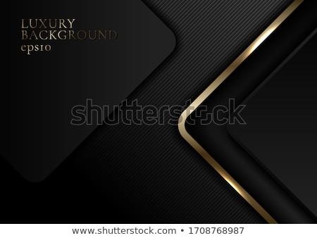 Vektör gerçekçi vip kart kâğıt dizayn Stok fotoğraf © nezezon