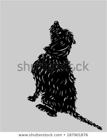 Silhouet aanbiddelijk gemengd ras hond vergadering Stockfoto © vauvau