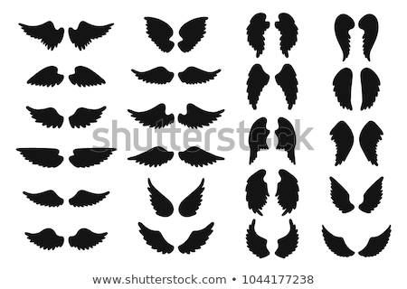 Silhouette wings Stock photo © blackmoon979