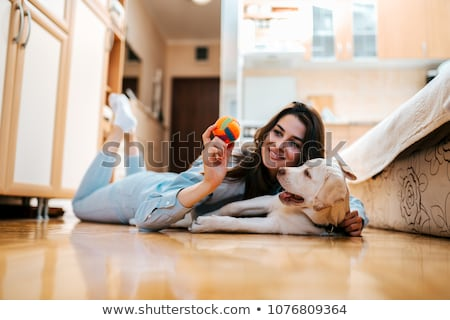 cheerful young girl playing with her dog stock photo © deandrobot