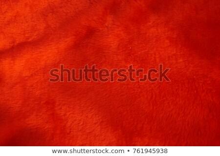 плюш красный текстуры ткань подробность ткань Сток-фото © THP