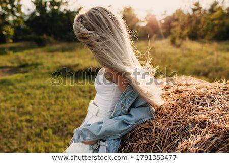 Genç kuru ot yığını Stok fotoğraf © pajgor