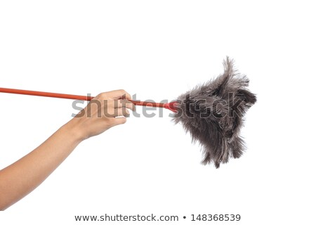 woman holding feather cleaner Stock photo © smithore