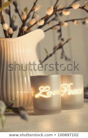 ciepły · atmosfera · przyjazny · rodziny · posiedzenia · wygodny - zdjęcia stock © sandralise
