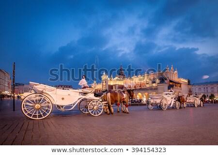 Krakkó óváros vihar királyi palota viharos Stock fotó © Estea