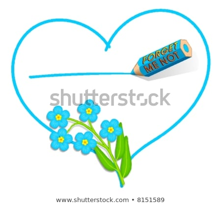 forget-me-not 02 Stock photo © LianeM