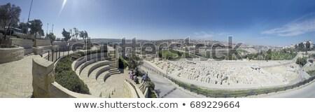 Temető olajbogyók Jeruzsálem Izrael temető sír Stock fotó © eldadcarin