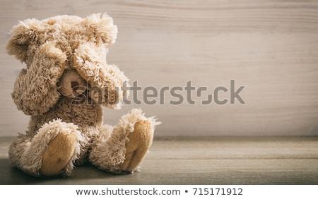 sad bear stock photo © badmanproduction