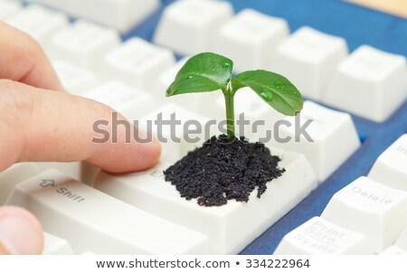 Keyboard with Eco Friendly Button. Stock photo © tashatuvango