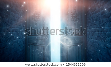 Open old doorway stock photo © gophoto