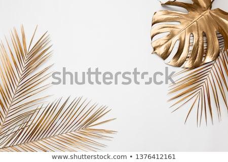 Beauty in Gold Stock photo © luminastock
