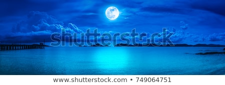nacht · zeegezicht · mooie · abstract · natuurlijke · dramatisch - stockfoto © Anna_Om