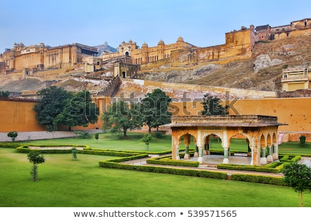 Gardens in Amber Fort near Jaipur Stock photo © faabi